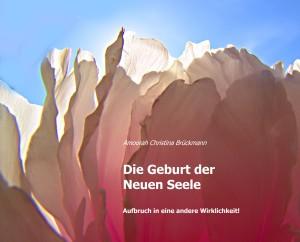 Plakat Buch